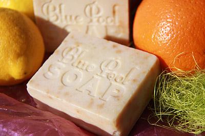 Lemon & Orange copy
